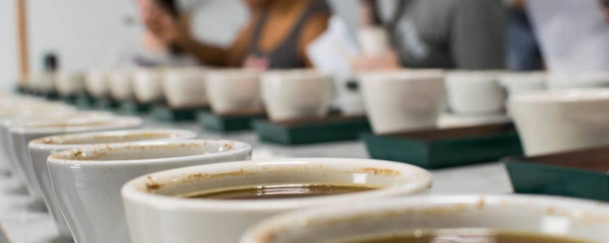 کاپینگ قهوه Coffee Cupping چیست ؟